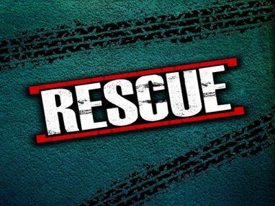 bach flower remedy rescue remedy emergencies, rescue remedy crises, rescue remedy old wounds,