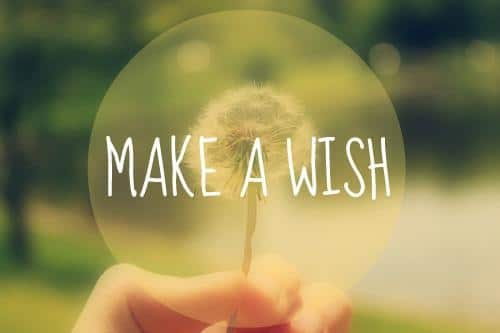 MANY WISHES/SPEED