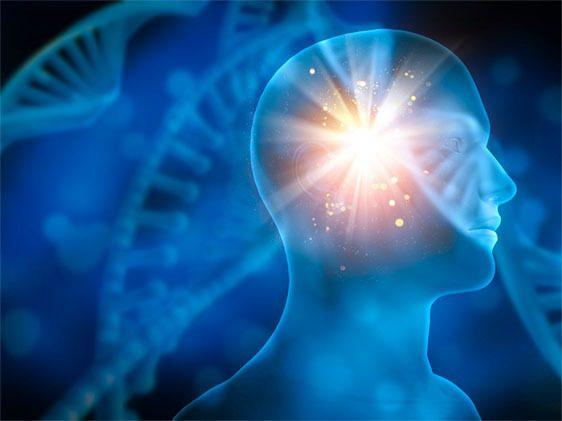 Parkinson's disease brain stroke ischemia