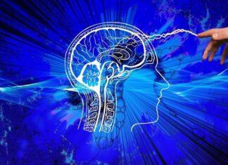 Brain Serum BNS to Ease Brain Related Issues CS-24
