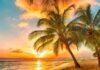 ew Experiences of Golden Sunrise Start A New Beginning