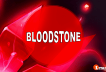 Bloodstone Heliotrope Gemstone Meaning Benefits Stone of Courage
