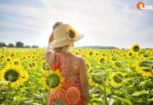Vitamin D is Sufficient to Reduce the Risk of Death from Coronavirus Study Shows